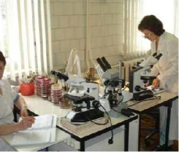 Анализ на хламидии, хламидиоз, симптомы у женщин и мужчин, признаки хламидиоза, стоимость анализа - CMD Центр Молекулярной Диагностики