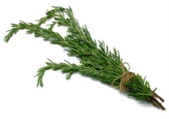 Магия свежих трав