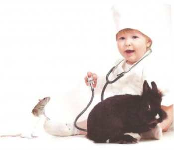 Инфекции, передающиеся от животных